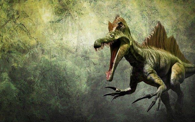 spinosaurus photo